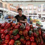 Feria del pimiento en Benavente
